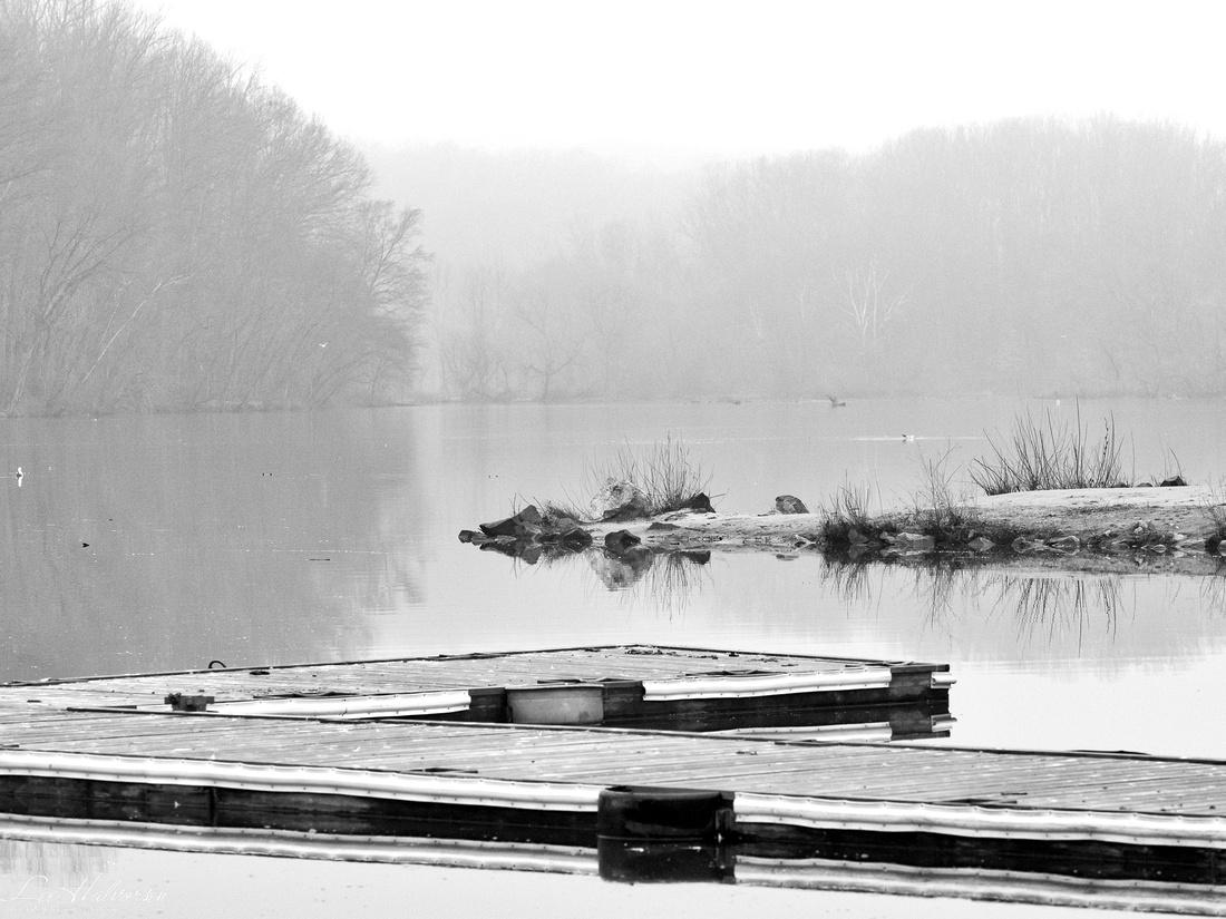 Lake Accotink dock