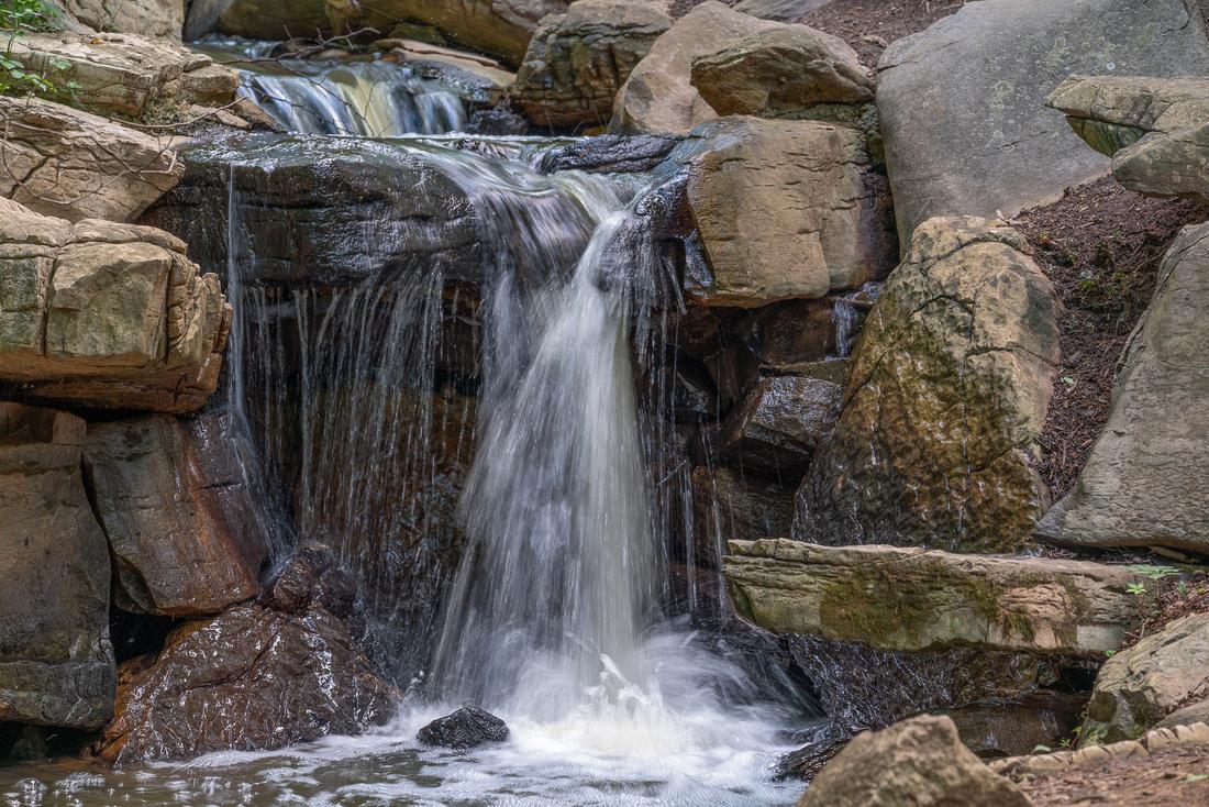 Bog Park Lake Waterfall