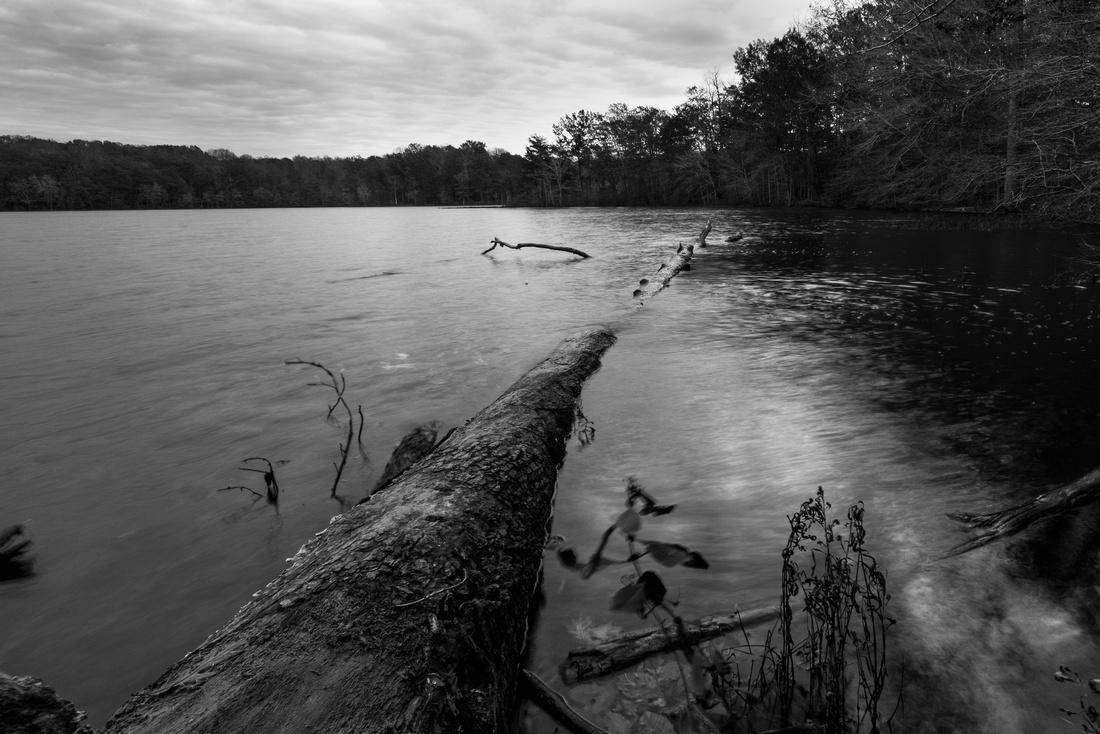 Burke Lake, Virginia