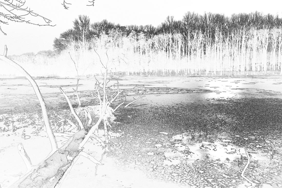 Burke Lake, VA. Infrared post processing treatment.