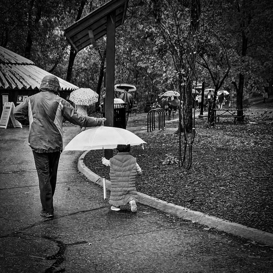 Rain Storm at Glen Echo Park
