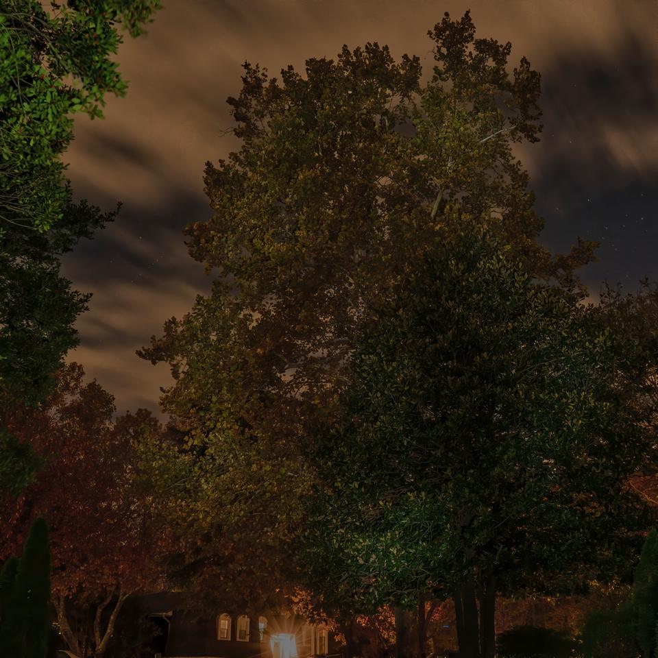 Night shot in the driveway