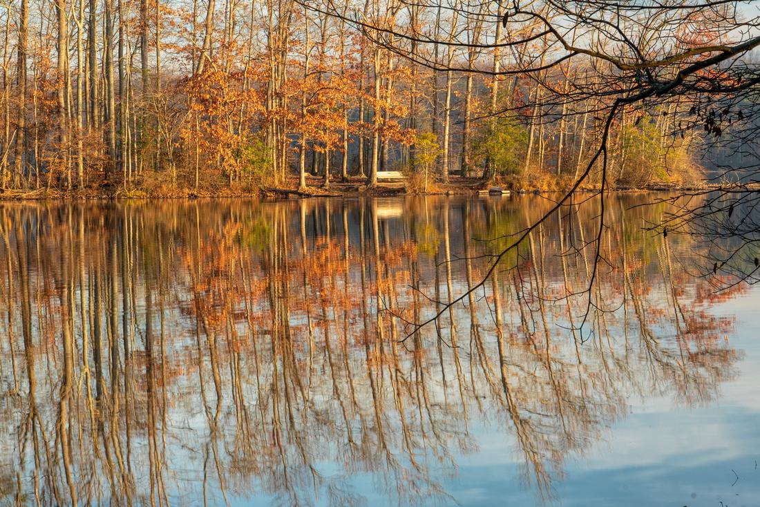 Lake Accotink at Dawn
