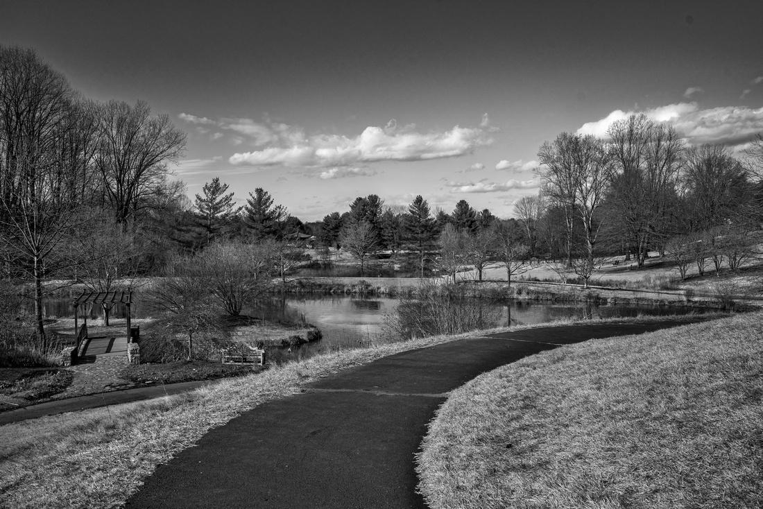 Meadowlark Park.