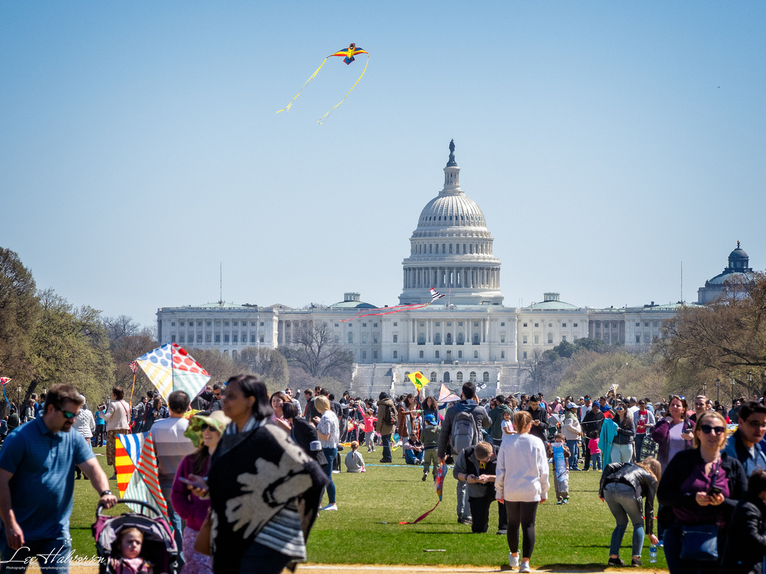 Kites on the Mall in Washington, DC